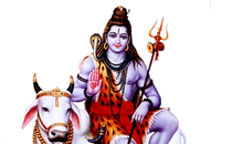 Astrologerravishankar